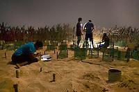 07/Septiembre/2014 Cabo Verde. Boa Vista.<br /> Voluntarios trabajando en los nidos de tortuga Carettha carettha en el vivero que tiene la ONG Bios para la preservación de la especie.<br /> <br /> © JOAN COSTA