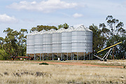 Grain silos in farm paddock in rural country New South Wales, Australia. <br /> <br /> Editions:- Open Edition Print / Stock Image