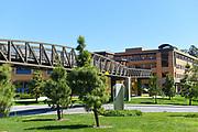 Pedestrian Bridge Over Peltason Drive on the University of California Irvine, UCI Campus