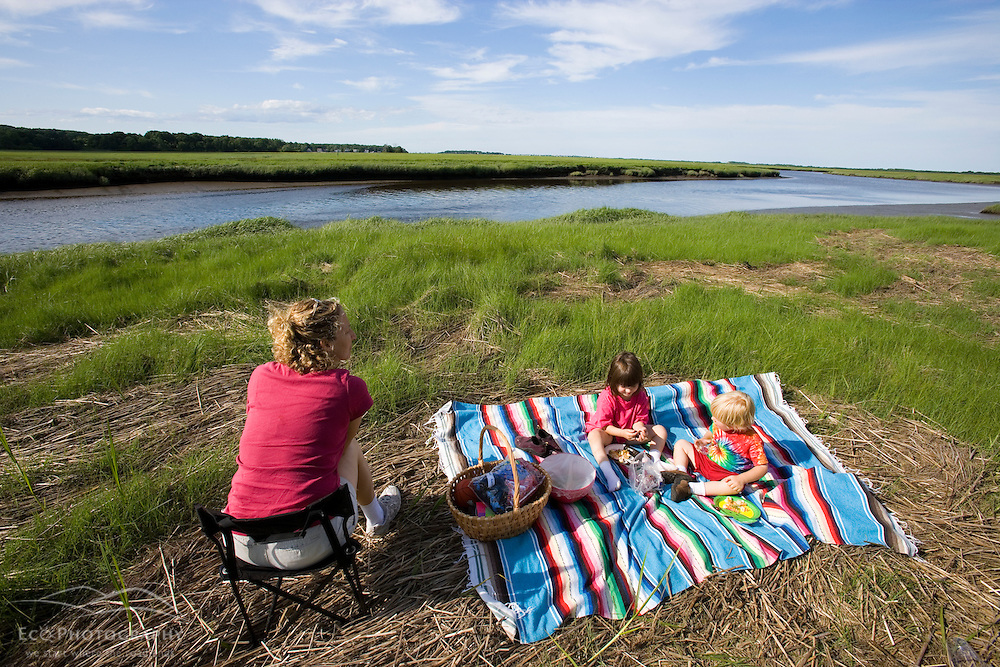 A picnic next to a tidal estuary in Plum Island Sound Massachusetts USA