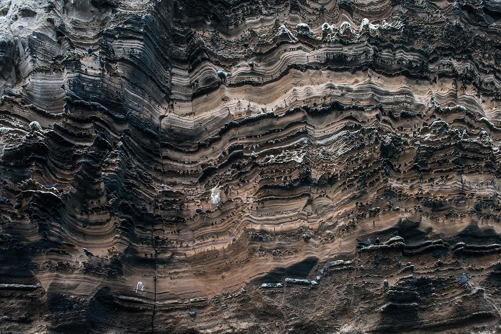 Punta Vicente Roca, Isabela Island<br /> Galapagos Islands<br /> Ecuador<br /> South America