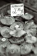 mushroom in basket,farmers martket item,black and white verticle