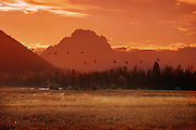 Artistic Photography of scenic vistas, sunrises and sunsets in Jackson Hole, Grand Teton National Park and Yellowstone National Park