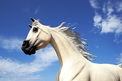 """New Mexico: Ruidoso, """"Free Spirits"""", horse sculpture, sculptor Dave McGary ,  Photo: nmhors102.Photo copyright Lee Foster, www.fostertravel.com, 510/549-2202, lee@fostertravel.com"""