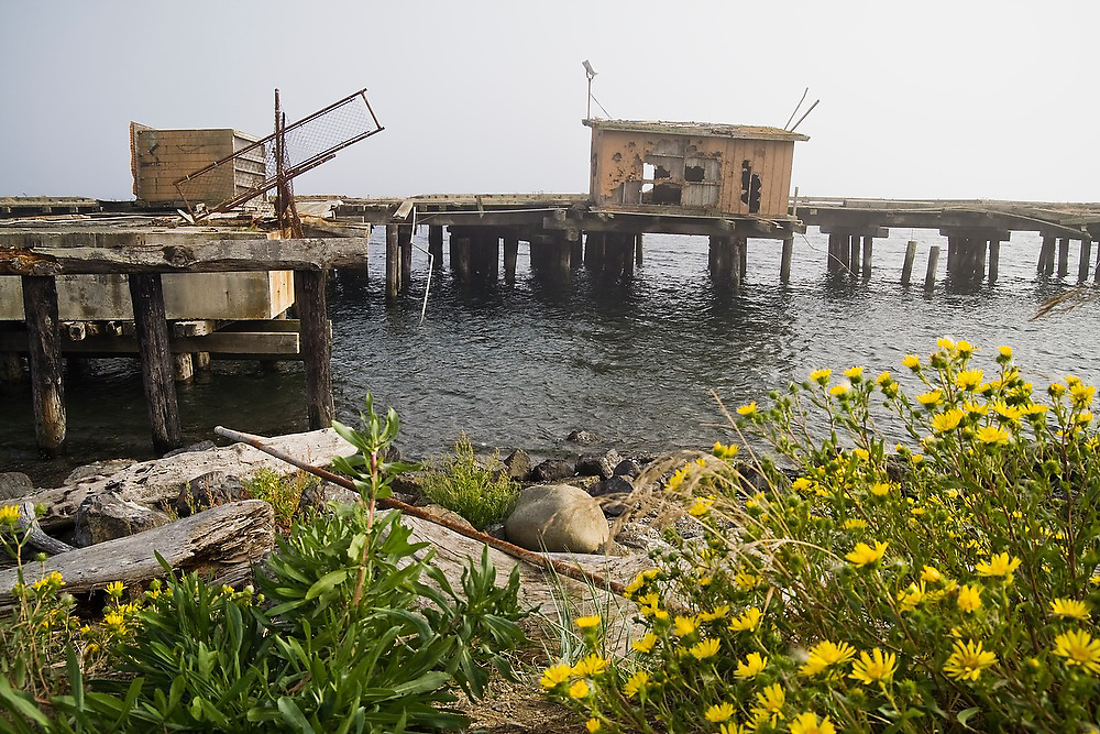 An abandoned and derelict pier on Ediz Hook in Port Angeles Harbor, Washington.