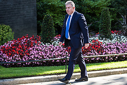 London, UK. 23 July, 2019. Brandon Lewis MP, Minister Without Portfolio, arrives at 10 Downing Street for the final Cabinet meeting of Theresa May's Premiership. The name of the new Conservative Party Leader, and so the new Prime Minister, will be announced at a special event following the meeting.