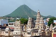 India, Rajasthan, Pushkar Rangji Hindu temple
