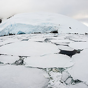 Thin plates of sea ice cover most of the surface of the water in the Lemaire Channel on the western side of the Antarctic Peninsula.
