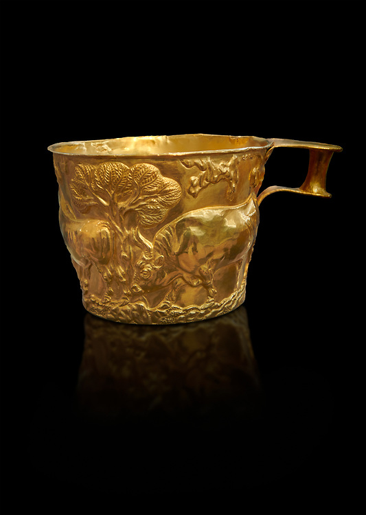 Vapheio type Mycenaean gold cup depicting a wild bull hunt , Vapheio Tholos Tomb, Lakonia, Greece. National Archaeological Museum of Athens.  Black Background<br /> <br />  Two masterpieces of Creto - Mycenaean gold metalwork were excavated from a tholos tomb near Lakonia in Sparta in 1988. Made in the 15th century BC, the gold cups are heavily influenced by the Minoan style that was predominant in the Agean at the time. The bull hunt was popular with  Mycenaean  and Minoan artists and symolised power and fertility. The distinctive shape of the cup is kown as 'Vapheio type'. .<br /> <br /> If you prefer to buy from our ALAMY PHOTO LIBRARY  Collection visit : https://www.alamy.com/portfolio/paul-williams-funkystock/mycenaean-art-artefacts.html . Type -   Athens    - into the LOWER SEARCH WITHIN GALLERY box. Refine search by adding background colour, place, museum etc<br /> <br /> Visit our MYCENAEN ART PHOTO COLLECTIONS for more photos to download  as wall art prints https://funkystock.photoshelter.com/gallery-collection/Pictures-Images-of-Ancient-Mycenaean-Art-Artefacts-Archaeology-Sites/C0000xRC5WLQcbhQ