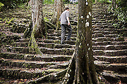 Traveler Zach Podell-Eberhadt walks up ancient stairs overgrown with trees at the Bonampak Mayan ruins in Chiapas, Mexico.