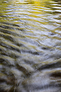 Ripples on North Creek in Bothell, Washington, alternate between reflecting the sky and the trees on the creek's banks.