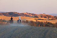 Work Family Guest Ranch, San Miguel, California offers horseback rides through the hills on the 12,000 acre property.  An evening horseback ride in the hills of the ranch with Kelly Work and her two daughters, Mattie and Johanna