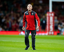 Attack Coach Rob Howley of Wales during the pre match warm up<br /> <br /> Photographer Simon King/Replay Images<br /> <br /> Friendly - Wales v Ireland - Saturday 31st August 2019 - Principality Stadium - Cardiff<br /> <br /> World Copyright © Replay Images . All rights reserved. info@replayimages.co.uk - http://replayimages.co.uk