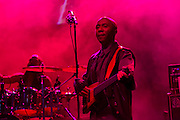 Shaggy's bassist in a red haze at the Biolife Sounds of Reggae at Brooklyn's Barclays Center.