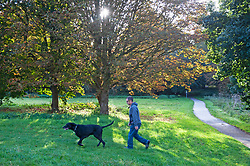 ©Licensed to London News Pictures 04/10/2019.<br /> Sidcup,UK. Autumnal weather this morning for dog walkers at Footscray Meadows, Sidcup, South East London. Photo credit: Grant Falvey/LNP