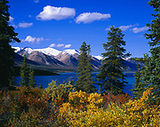 Autumn colors of willows and dwarf birches along the shore of Upper Twin Lake, Lake Clark National Park, Alaska.