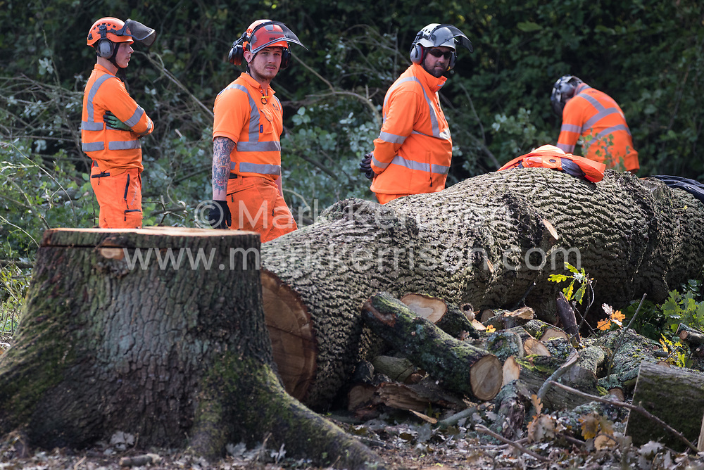 Denham, UK. 29th September, 2020. Tree surgeons working on behalf of HS2 Ltd fell trees in Denham Country Park for works connected to the HS2 high-speed rail link. Anti-HS2 activists based at the nearby Denham Ford Protection Camp, who are trying to prevent or delay the destruction of the woodland, contend that the area of Denham Country Park currently being felled is not indicated for felling on documentation supplied by HS2 Ltd.