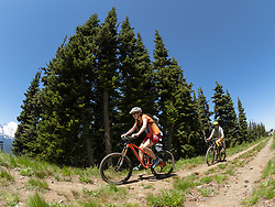 United States, Washington, Crystal Mountain, mountain bikers on ridge