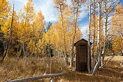 """""""Outhouse in the Aspen"""" - This old outhouse was photographed among the yellow fall aspen at the shack near Brockway Summit in Tahoe."""