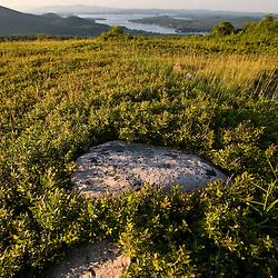 A hilltop field above Lake Winnipesauke in Alton, New Hampshire.