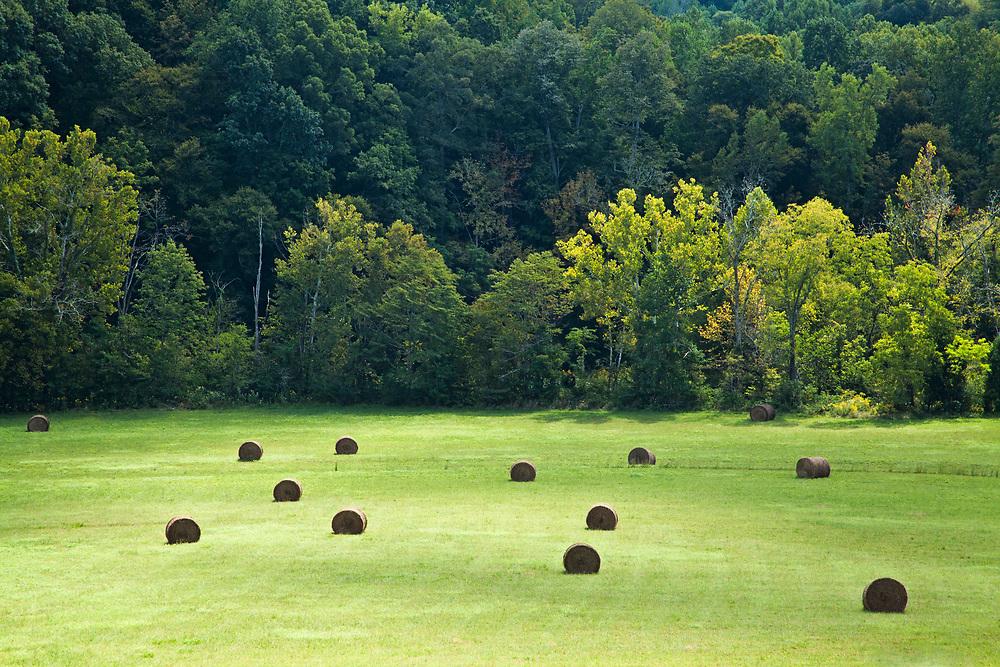 Nashville area farmland