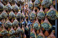 France, Pyrénées-Atlantiques (64), Pays-Basque, vallée des Aldudes, le Séchoir Collectif des Aldudes assure une prestation de séchage et l'affinage de jambons // France, Pyrénées-Atlantiques (64), Basque Country, Aldudes valley, the Collective Dryer of Aldudes provides a service for drying and refining hams