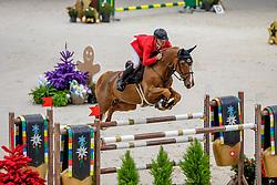 SCHWIZER Pius (SUI), Vient Tu du Rouet<br /> Genf - CHI Geneve Rolex Grand Slam 2019<br /> Coupe de Genève<br /> Internationales Springen CSI5* mit Stechen<br /> International Jumping Competition 1m55<br /> Against the Clock with Jump-Off<br /> 14. Dezember 2019<br /> © www.sportfotos-lafrentz.de/Stefan Lafrentz