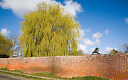 Red brick crinkle crankle or serpentine wall at Easton, Suffolk, England