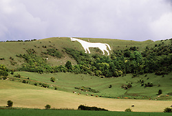 July 21, 2019 - Prehistoric White Horse Carved Into Hillside, Oxfordshire, England (Credit Image: © Bilderbuch/Design Pics via ZUMA Wire)