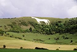July 21, 2019 - Prehistoric White Horse Carved Into Hillside, Oxfordshire, England (Credit Image: © Bilderbuch/Design Pics via ZUMA Wire)
