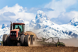 Farming in Teton Valley Idaho below the Grand Tetons.  Sadly this land has become to valuable for homes to farm.