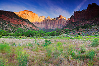 """""""Towers of the Virgin"""" - Zion National Park, Utah<br /> <br /> Sunrise at the Towers of the Virgin during spring at Zion."""