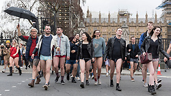 "© Licensed to London News Pictures. 13/01/2019. LONDON, UK.  Participants take part in ""No Trousers On The Tube Day"", taking a detour above ground through Westminster.  Now in its 10th year, the annual event sees hundreds of riders travel on the tube without wearing trousers.  Similar rides are taking place worldwide under the umbrella of ""No Pants Subway Ride"", which launched in New York in 2002.  Photo credit: Stephen Chung/LNP"