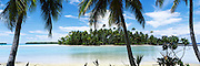 Palm trees on the beach, Rangiroa Atoll, French Polynesia
