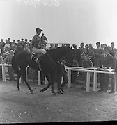 The Curragh Races.13/05/1959