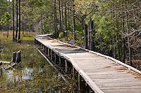 Guana Tolomato Matanzas National Estuarine Research Reserve St. Johns County Florida, USA.
