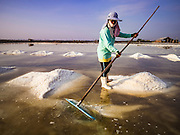 22 FEBRUARY 2017 - BAN LAEM, PETCHABURI, THAILAND: A worker rakes salt into piles during the salt harvest in Petchaburi province of Thailand, about two hours south of Bangkok on the Gulf of Siam. Salt is collected in coastal flats that are flooded with sea water. The water evaporates and leaves the salt in large pans. Coastal provinces south of Bangkok used to be dotted with salt farms, but industrial development has pushed the salt farms down to remote parts of Petchaburi province. The harvest normally starts in early February and lasts until early May, but this year's harvest was delayed by a couple of weeks because of unseasonable rain in January that flooded many of the salt collection ponds.    PHOTO BY JACK KURTZ