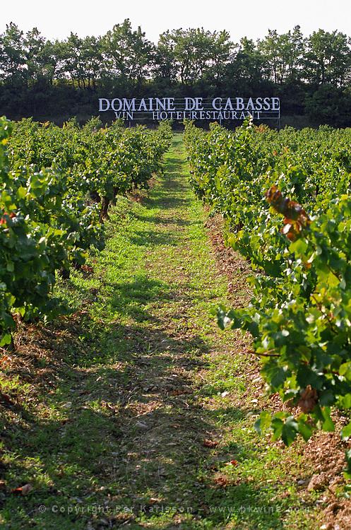 vineyard domaine de cabasse rhone france