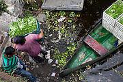 Un trabajador descarga cajas de cosecha en los canales de Xochimilco para su comercio. Octubre 21 de 2015. (Foto: Prometeo Lucero)