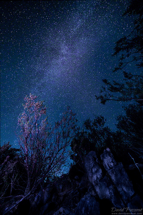 Gazing stars and milky way.