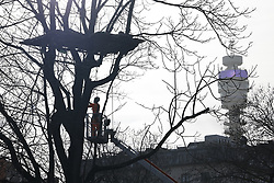 © Licensed to London News Pictures. 28/01/2021. London, UK. A workman uses a chainsaw to cut down branches from a tree as bailiffs remove HS2 Rebellion protesters from other trees above Euston Square Gardens. Protestors are resisting a police operation to remove them for a second day. It is reported the protesters have built a 100ft tunnel under the gardens. Photo credit: Peter Macdiarmid/LNP