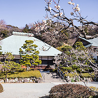 Jomyoji, a Rinzai Zen Buddhist temple in Kamakura was founded by the influential Ashikaga clan. Jomyo-ji's main hall sits at the end of a garden and houses a statue of Buddha.  Jomyoji also has a restored tea house Kisen-an where visitors can enjoy the view of the zen karesansui garden. For its role in Japanese history, Jomyo-ji is named a National Historical Site by the government of Japan.  It is well known forn early blooming plums in front of the temple itself.