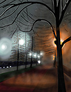 Fog, rain and trees at night at Prospect Park West in Brooklyn.