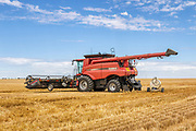 Case 7240 combine harvester in field after harveting <br /> <br /> Editions:- Open Edition Print / Stock Image