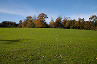 Empty field in Cabinteely Park Dublin Ireland