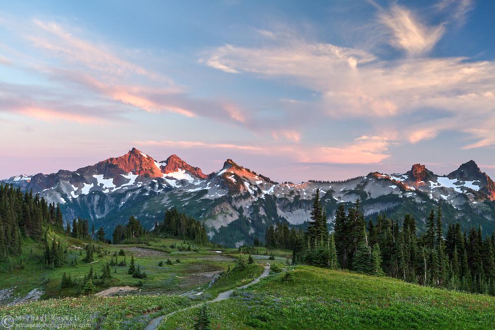The setting sun casts a glow on the Tatoosh Range from Mazama Ridge's Skyline Trail in Mount Rainier National Park, Washington State, USA
