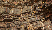 White veins of quartzite forming dykes crossing layers of metamorphosed sedimentary rock in the coastal cliff on the Atlantic coast at Odeceixe, Algarve, Portugal, southern Europe