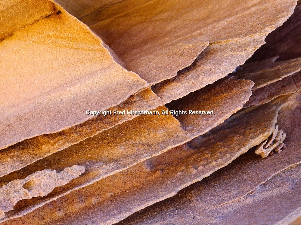 Harder joint filling creating fins on wind sculpted Navajo Sandstone, Colorado Plateau, Vermilion Cliffs National Monument, Paria-Vermilion Cliffs Wilderness, Arizona.