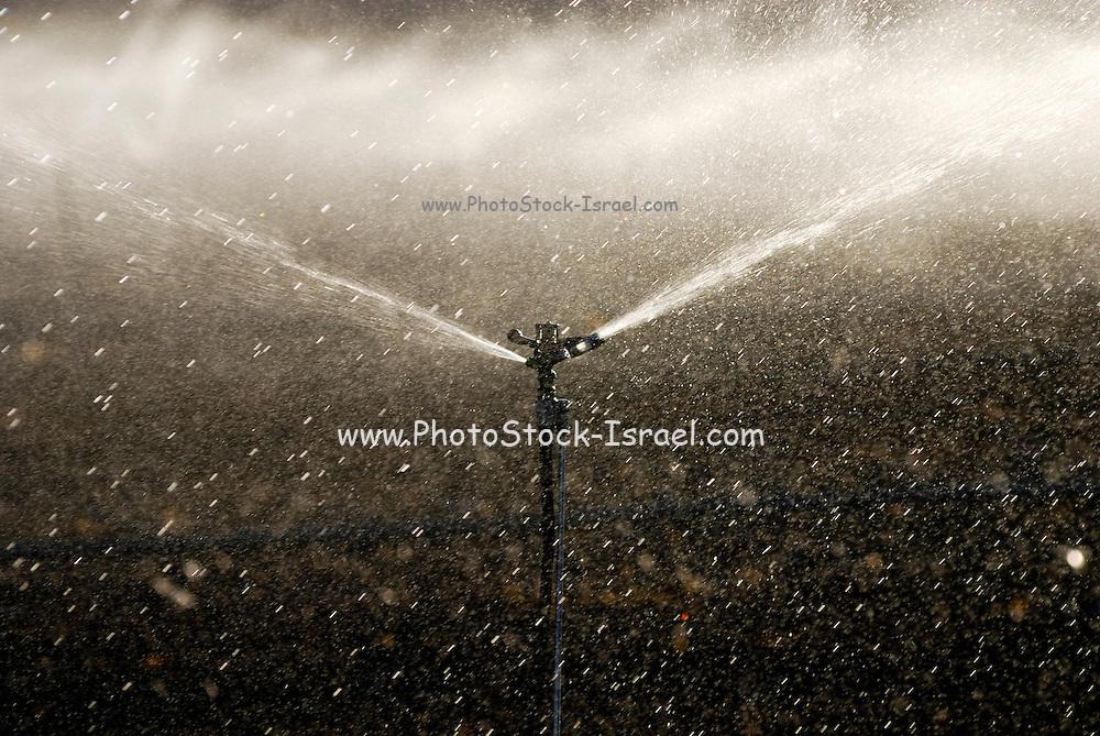 Israel, Negev, watering fields with sprinklers
