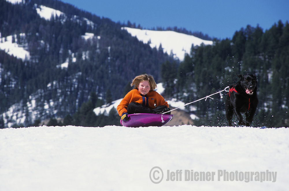 A dog tows a boy on a sled in Jackson Hole, Wyoming.